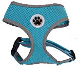 Turquoise Reflective Mesh Soft Dog Harness Safe Harness No Pull Summer Pet Harnesses for Small Dogs,Medium Size
