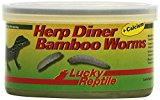 Lucky Reptile HDC-31 Herp Diner Bamboo Worms