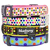 Blueberry Pet Soft & Comfortable Classic Uptown Fun Polka Dots Canvas Adjustable Neoprene Padded Dog Collar, Neck 30cm-40cm, Small, Collars for Dogs