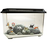 OCEAN FREE PT068 GOLDFISH 12L FISH TANK BOWL STARTER KIT REPTILE VIVARIUM TURTLE TANK OR BREEDING BOX