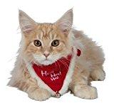 Trixie Christmas Collar with Neckerchief,  XS