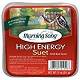 Morning Song High Energy Suet Wild Bird Food, Size: 11 Ounce