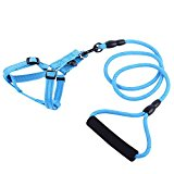 Alxcio Reflective Pet Lead Leash with Handle Adjustable Strap Rope Chain Protective Outdoor Walking Nylon Pet Vest Harness Dog Training Harness Blue S