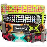 Blueberry Pet Soft & Comfortable Vintage Tribal Pattern Adjustable Neoprene Padded Dog Collar in Extravagant Orange, Neck 30cm-40cm, Small, Collars for Dogs, Matching Lead & Harness Available Separately