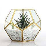 Gold Copper Brass Tabletop Geometric Pentagon Ball Shape Open Fern Moss Succulent Plants Glass Terrarium Planter Pot Box 17.5 x 17.5 x 15cm Christmas Present