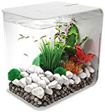 biOrb Flow Aquarium, 30 Litre, White, LED Light