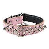 Spirit Pet Products Rivet Spiked Studded Genuine Leather Dog Collar for Medium Pet