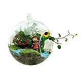 SOLEDI Cute Clear Glass Round with 1 Hole Flower Plant Hanging Vase Wedding Decor