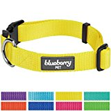 Blueberry Pet Classic Solid Color Nylon Dog Collar in Blazing Yellow, Neck 45cm-66cm, Large, Collars for Dogs